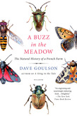 A Buzz in the Meadow