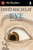 Eye: How It Works
